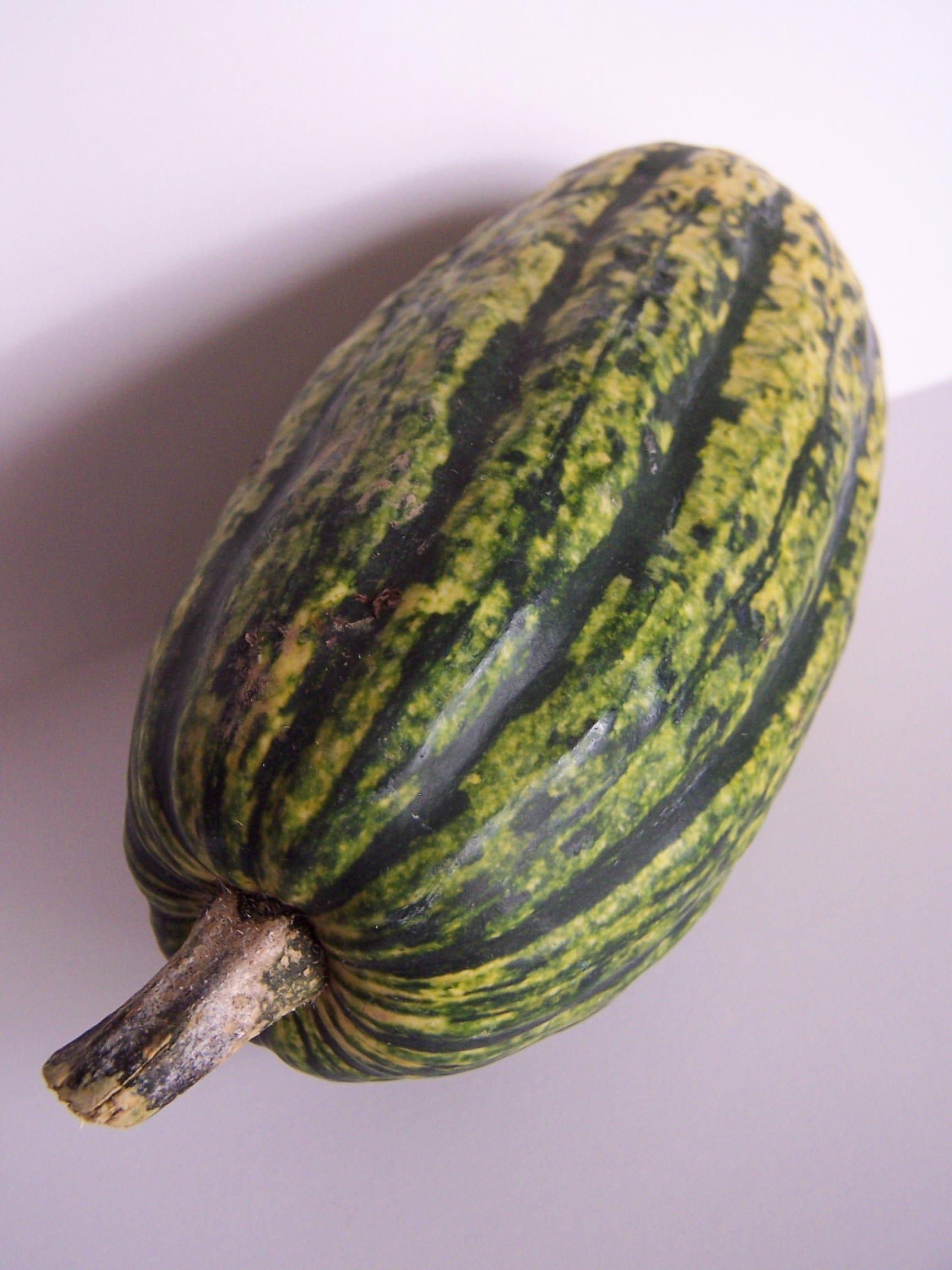 Delicata squash whole