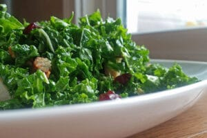 Kale Salad with Leftover Pork, Dried Cranberries and Sage Maple Dressing on plate