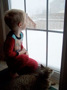 Chocolate Cookie Crisps  - the snow!