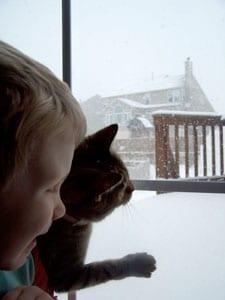 Chocolate Cookie Crisps - the snow 2!