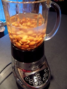 almonds in blender