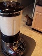 making almond milk no cat
