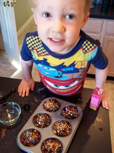Whole Wheat Chocolate Muffins with Added Protein (and Sprinkles!) - being a goof