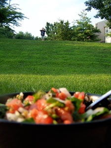 Tomato Spinach Salsa - blurry