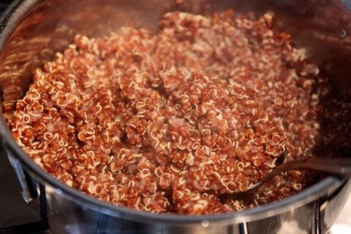 Red Quinoa Salad with Skillet Veggies - quinoa