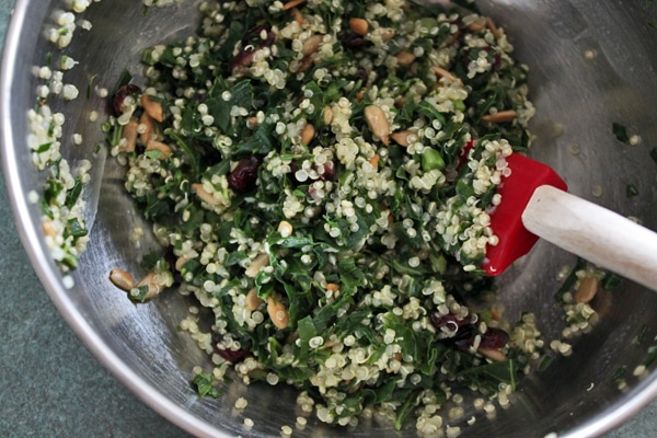 Kale Quinoa Salad with Dried Cranberries and Sunflower Seeds Toss