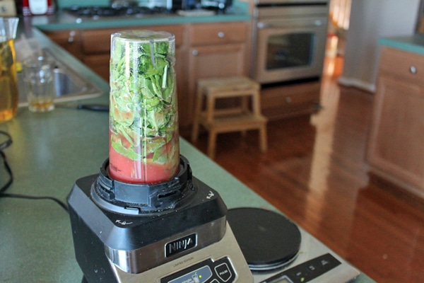 Green Watermelon Avocado Smoothie Blend