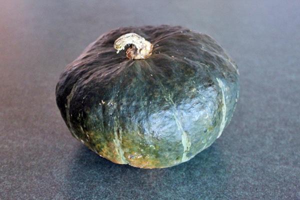 Kabocha Squash - Japanese Pumpkin
