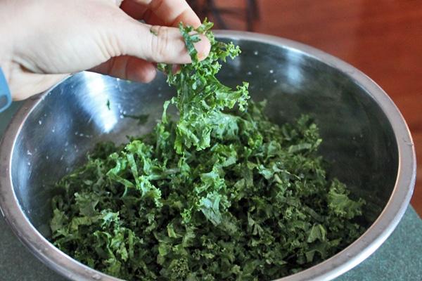 Kale Pizza Salad kale