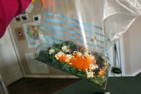 Kale and Raw Butternut Squash Salad with Feta, Walnuts and Dried Cranberries - in bag