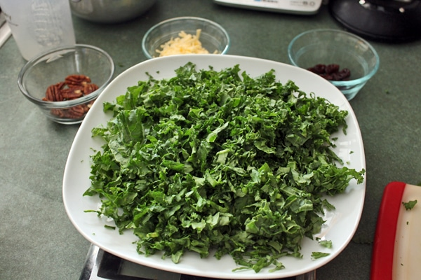 making Kale salad with Pecans, Dried Cherries and Gouda