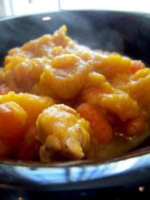 Butternut Carrot Chicken Soup/Stew
