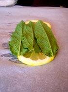 Lemon Sage Chicken Packs - prep packs