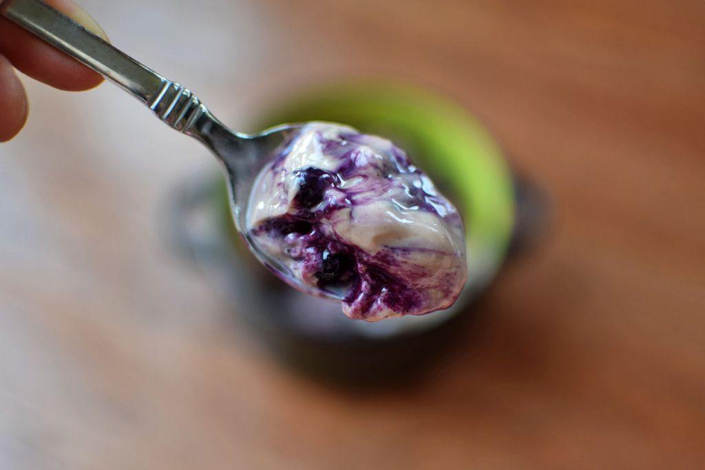 Chocolate Blueberry Protein Yogurt Bite